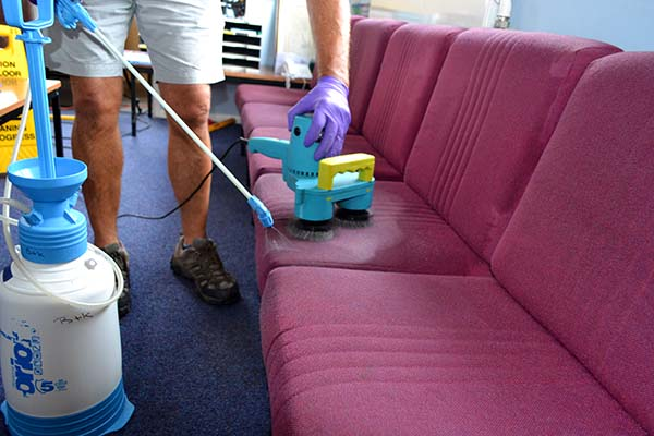professional Sedgefield upholstery and sofa cleaners